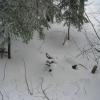 PS_Bivak_Zimoskozatocisce_01.jpg